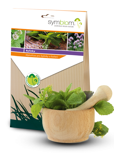 11. Symbivit zioła