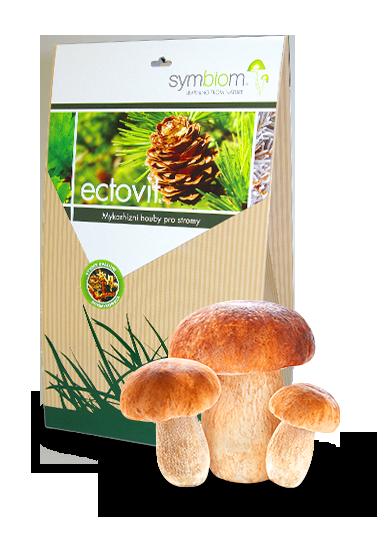 13. Ectovit grzyby leśne